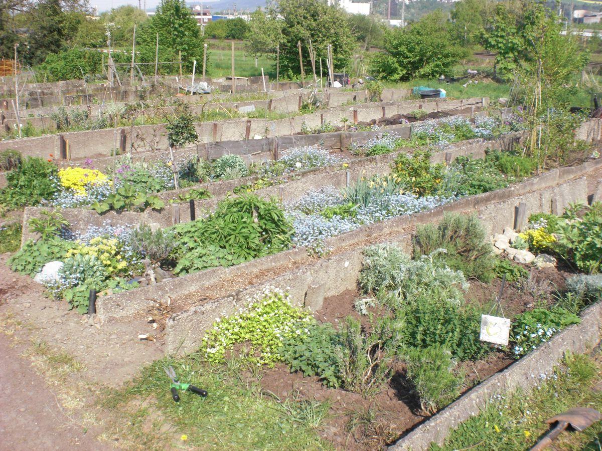 Internationaler Frauengarten Trier