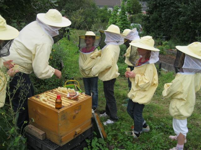Bienenworkshop für Kinder im Grundschulalter